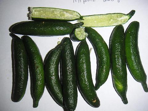 Finger Limes - Green Loose 1kg
